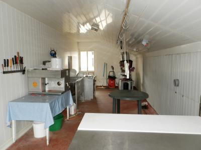 LOUHANS (71), vends ensemble immobilier sur terrain 20 hectares bio libres de droits, ANNEXE 29 m²