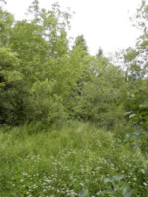 Vente MONTAIGU (39570), maison de village en pierre 127 m², jardin non attenant 522 m², JARDIN NON ATTENANT