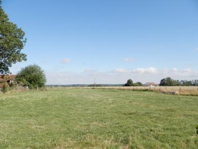 BELLEVESVRE (71), à vendre maison plain-pied 136 m², cinq chambres, deux garages, terrain 14800 m²., TERRAIN 14800 m²