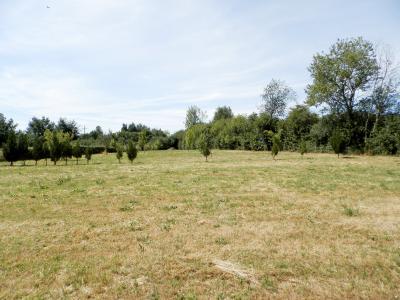 SAINT-GERMAIN-DU-BOIS (71), à vendre maison contemporaine plain-pied 180 m², terrain 5935 m², TERRAIN 5935 m²