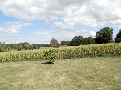 Vente SAINT GERMAIN DU BOIS (71), maison familiale 140 m², terrain 2510 m², VUE TERRAIN