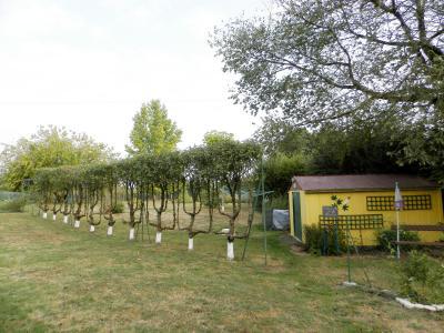 Proche BLETTERANS (39), à vendre maison rénovée 176 m², quatre chambres, terrain 2183 m²., VERGER AVEC ABRI JARDIN
