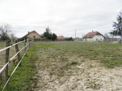 BELLEVESVRE (71), à vendre maison rénovée 143 m², dépendances, terrain environ 1.5 hectare., TERRAIN