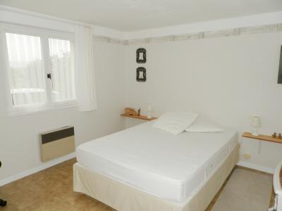 Secteur BRAINANS (39), à vendre maison 127 m² idéale passionnés équidés, terrain avec vue 14691 m²., LOGEMENT rez-de-chaussée