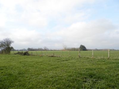SAINT GERMAIN DU BOIS (71), à vendre ferme rénovée 111 m², terrain 4781 m², sans voisinage., VUE TERRAIN