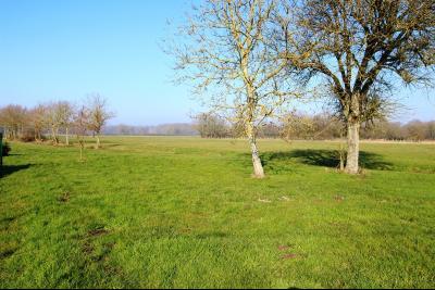 Proche Mervans, à vendre ferme bressane rénovée sur terrain de plus de 6 hectares., TERRAIN 6 hectares