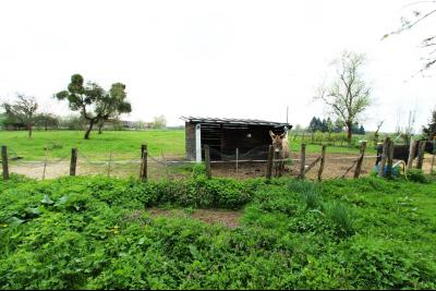 BELLEVESVRE (Saône-et-Loire)), à vendre ancienne ferme sur 7215 m² de terrain., Terrain 7215 m²