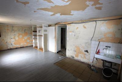 A 4 km du centre de Louhans, vends une maison à finir de rénover sur 2135 m² de terrain., PIECE RDC A RENOVER