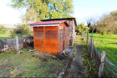 Proche Bletterans (39 JURA), à vendre maison de village 3 chambres avec garage et jardin., ABRI JARDIN