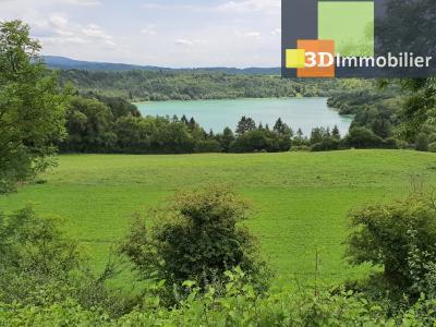 Secteur Clairvaux-les-Lacs (39 JURA), à vendre maison de campagne avec 2 logements indépendants., A PROXIMITE DE LA RIVIERE DE L