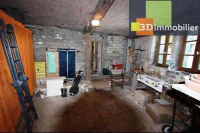 A  vendre en viager occupé, une maison évolutive en parfait état sur le secteur de Lons-le-Saunier., DEPENDANCE 1