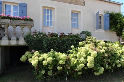 Pierre de Bresse, vends maison de caractère avec gîte indépendant sur 1700 m² de terrain, Maison à vendre