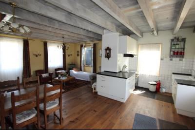 Pierre de Bresse, vends maison de caractère avec gîte indépendant sur 1700 m² de terrain, Pièce de Vie