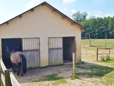 LONS LE SAUNIER, à vendre superbe propriété équestre avec chambres d