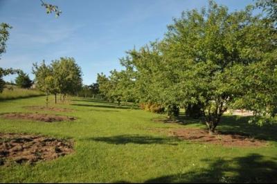 A VENDRE PROCHE CENTRE TOURNUS MAISON RECENTE ,TRES CONFORTABLE AVEC VUE , ENVIRONNEMENT CALME., jardin verger
