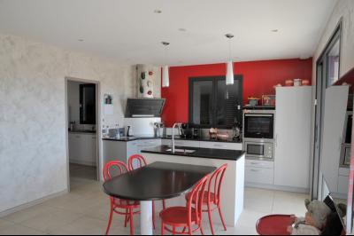 TOURNUS, à vendre TRES BELLE VILLA  AVEC VUE, maison de plain-pied, 7 pièces et 180 m² dépendances., Cuisine