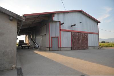 A 10 mn. de BELLEVILLE , vends TRES BELLE DEMEURE MAGNIFIQUEMENT RESTAUREE ET SON DOMAINE VITICOLE., CUVAGE