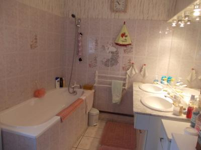 Secteur Chaussin, vends maison (ferme) de 5 pièces, 130m², annexe, sur 2500m² de terrain clos, salle de bain
