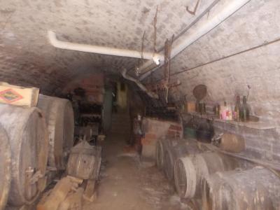Secteur Sellières, vends belle maison en pierres de 1813, 5 pièces, 125m² sur 6000m² terrain clos, cave voutée