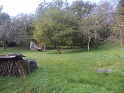 Proche Dole, vends ancien Moulin ( 1280 ) de 12 pièces, 450m² habitable sur 20000m² de terrain clos., verger arrière