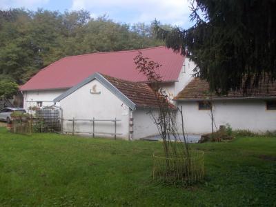 Proche Dole, vends ancien Moulin ( 1280 ) de 12 pièces, 450m² habitable sur 20000m² de terrain clos., dépendances