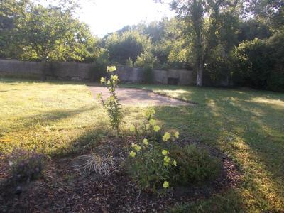 Chaumergy, à vendre ancienne ferme restaurée de 8 pièces, 240m² sur 5093m² de terrain clos., parc