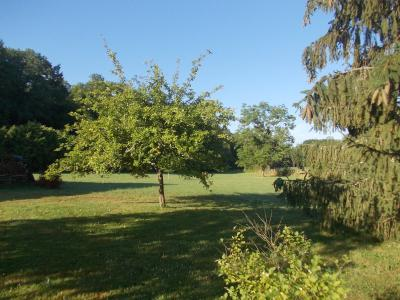 Chaumergy, à vendre ancienne ferme restaurée de 8 pièces, 240m² sur 5093m² de terrain clos., verger