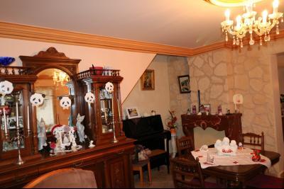 Chaussin à vendre confortable maison de 6 pièces, 170m², dépendances sur 12500m² de terrain clos., séjour