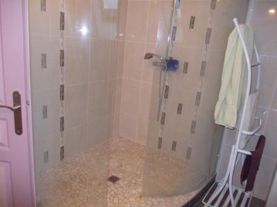 Chaussin à vendre confortable maison de 6 pièces, 170m², dépendances sur 12500m² de terrain clos., salle d
