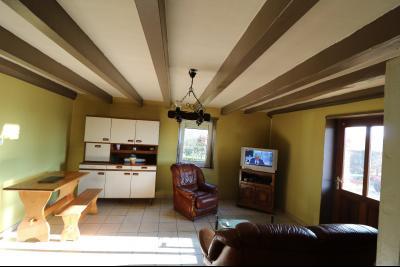 Chaussin à vendre maison (ancienne ferme) de 4 pièces, dépendances 260 m² sur 5417m² de terrain., salon