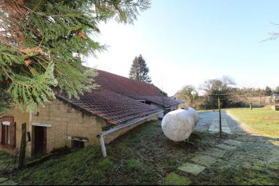 Chaussin à vendre maison (ancienne ferme) de 4 pièces, dépendances 260 m² sur 5417m² de terrain., vue arrière gauche
