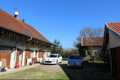 Secteur Chaussin, vends ancienne ferme de 7 pièces, 180m² , dépendances sur 2 hecatres de terrain., vue de gauche