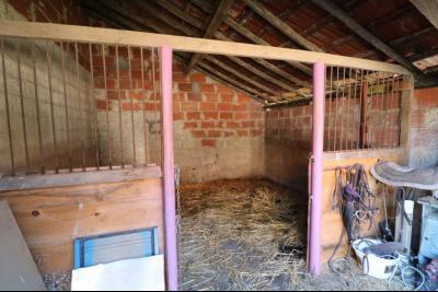 Secteur Chaussin, vends ancienne ferme de 7 pièces, 180m² , dépendances sur 2 hecatres de terrain., boxe 1  à cheval