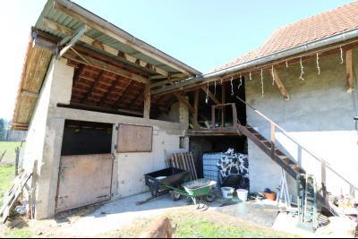 Secteur Chaussin, vends ancienne ferme de 7 pièces, 180m² , dépendances sur 2 hecatres de terrain., boxe 2 à cheval