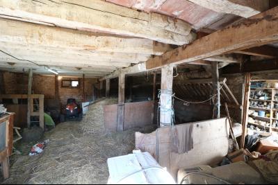 Secteur Chaussin, vends ancienne ferme de 7 pièces, 180m² , dépendances sur 2 hecatres de terrain., écurie