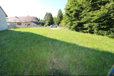 Secteur Le Deschaux au calme vends beau terrain à bâtir de 2000m² avec CU, commodités sur place., vue depuis le fond