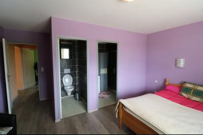 15 mn de Dole vends grande maison familiale de 220 et 150m² habitable dur 5600m² de terrain clos., chambre avec wc et douche