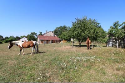 Poligny proche, vends ancienne ferme de 4 pièces, dépendances, boxes sur 6000m² de terrain., vue depuis pâtures