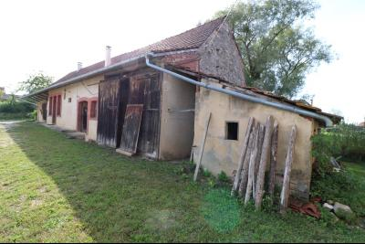 Secteur Pierre de Bresse vends corps de ferme avec dépendances sur 5500m² de terrain., vue droite