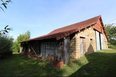 Secteur Pierre de Bresse vends corps de ferme avec dépendances sur 5500m² de terrain., vue gauche moulin