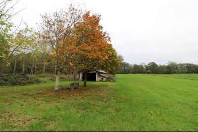 Forêt de Chaux, proche Dole, vends maison 6 pièces, 115m² habitables sur 2500m² avec dépendances., terrain 2000m² avec hangar 40m²