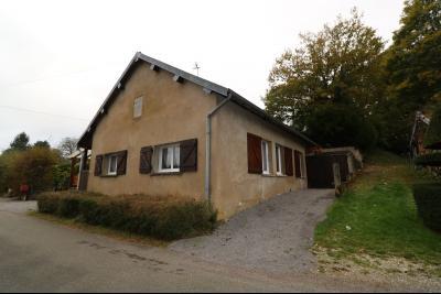 Forêt de Chaux, proche Dole, vends maison 6 pièces, 115m² habitables sur 2500m² avec dépendances., vue coté droit