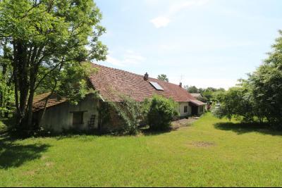 Chaussin à 2 kms vends ancienne ferme restaurée de 6 pièces, 132m² sur 2500m² de terrain clos., idem