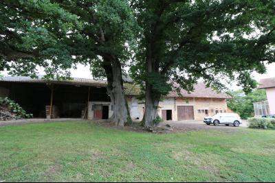 Secteur Poligny vends habitation de 4 pièces, 100m² et ferme 500m² sur 6800m² de terrain clos., chênes tricentenaires