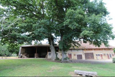 Secteur Poligny vends habitation de 4 pièces, 100m² et ferme 500m² sur 6800m² de terrain clos., idem
