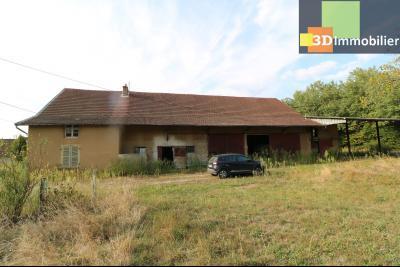 Proche Chaussin , vends ferme ancienne de 5 pièces, 90m², 500m² de dépendances sur1879m² de terrain, vue de coté