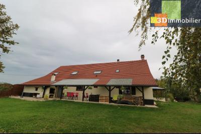 Secteur Pierre de Bresse, vends superbe maison, 9 pièces, 209m², dépendances, sur 5320m² de terrain., vue arrière avec terrasse
