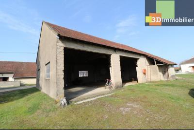 Chaussin (39 Jura), maison de 6 pièces, 130m² habitables, dépendance de 140 m² sur 3500m² de terrain, dépendances 140m²