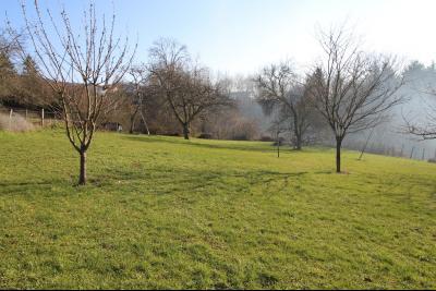 VENTE secteur ST AMOUR (39160): MAISON de 125 m² env., véranda de 28 m² terrasse, terrain 3360 m², seconde partie du terrain
