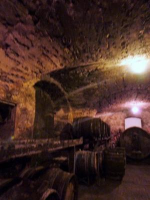 LONS-le-SAUNIER 39 JURA à 20km- Vends demeure de caractère dans beau village viticole sur 4750m²env., Une cave voûtée